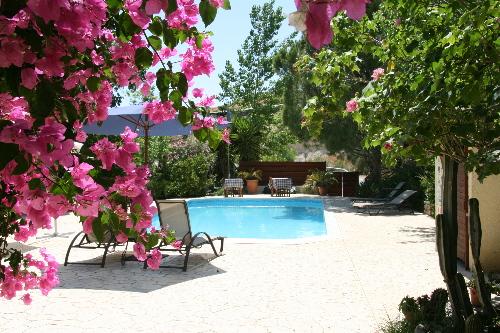 Vasilias Nikoklis Inn Pool 2
