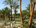 Palm Beach Hotel Gardens
