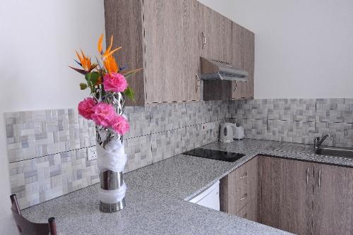 Cosmelenia Apartments Kitchen
