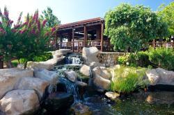 Capo Bay Hotel Gardens & Fish Pond