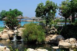 Capo Bay Hotel Fish Pond