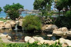 Capo Bay Hotel Fish Pond 3