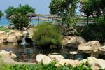 Capo Bay Hotel Fish Pond 3